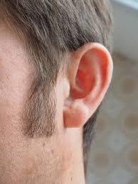 Calminax – besseres Hören - erfahrungen – in apotheke – test