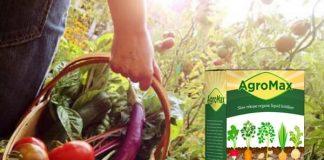 Agromax - erfahrungsberichte - bewertungen - anwendung - inhaltsstoffe