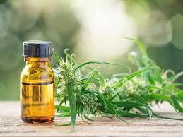 Cannabis Oil - bewertung - erfahrungen - test - Stiftung Warentest