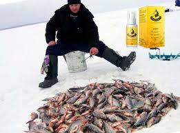 Fish Xxl - bestellen - bei Amazon - preis - forum