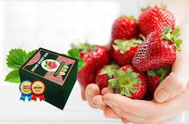 Home Berry Box - erfahrungsberichte - bewertungen - anwendung - inhaltsstoffe