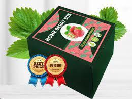 Home Berry Box - kaufen - in apotheke - bei dm - in deutschland - in Hersteller-Website